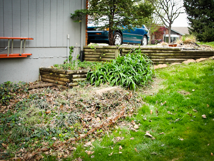 Before Landscaping Kansas City Missouri